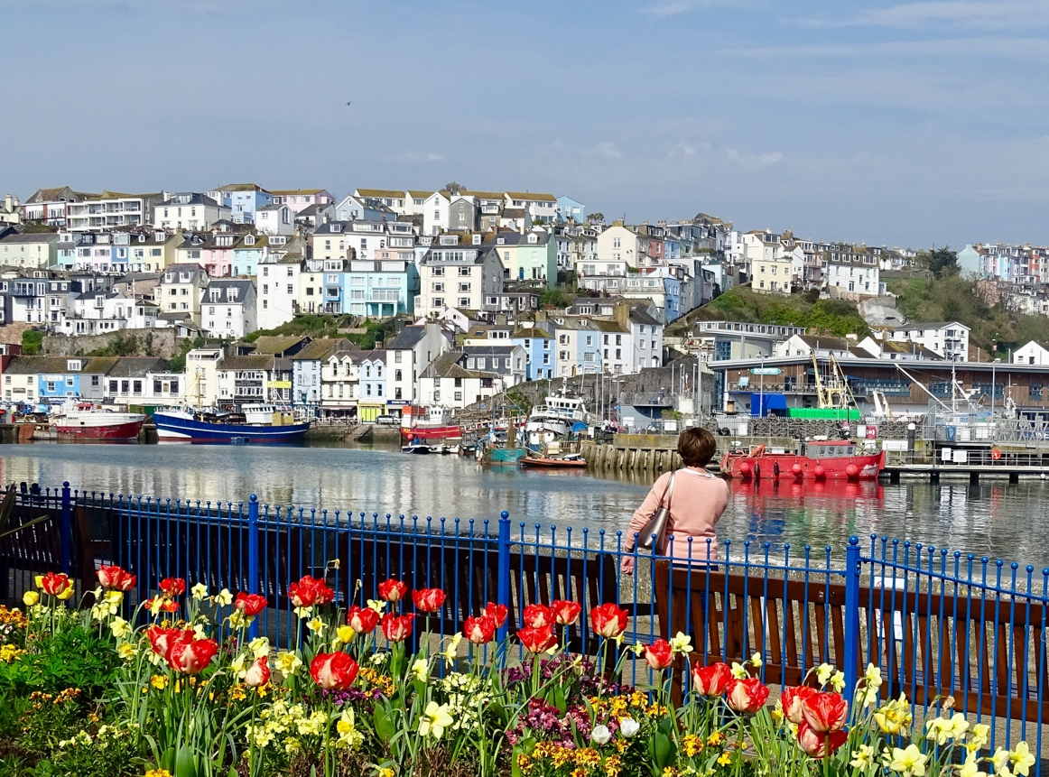Springtime photos from Brixham