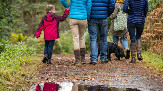Countryside walks with a ranger at Greenway